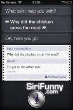 whydidthechicken