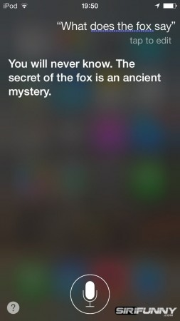 what-does-the-fox-say55